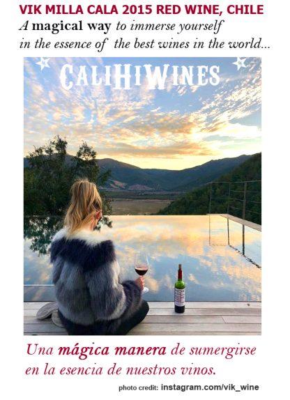 2015 VIK MILLA CALA RED WINE