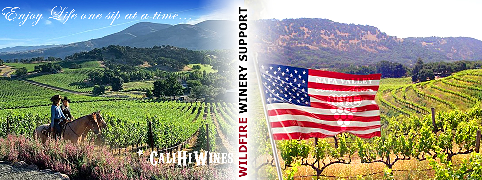 Wildfire Wineries Support Mixed 6-Pack